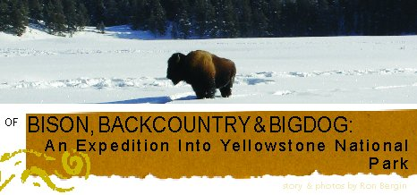 OF BISON, BACKCOUNTRY	& BIGDOG:  AN EXPEDITION INTO	YELLOWSTONE NATIONAL PARK - by Ron Bergin
