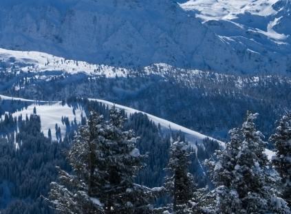 Cross Country Skier Magazine